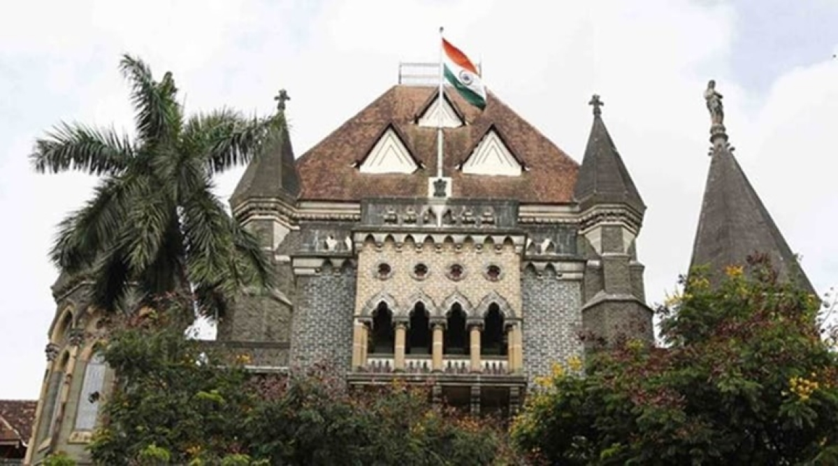 HC seeks govt reply on lawyers' plea for essential service nod