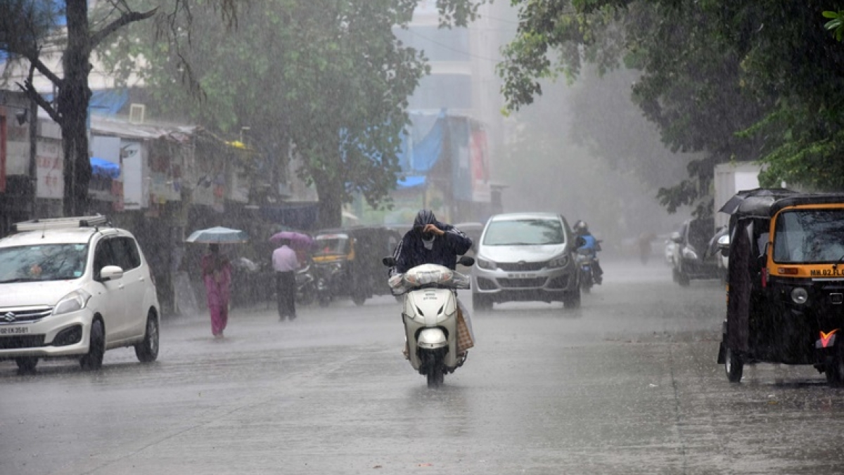 Weather update in Mumbai, Thane and Navi Mumbai on August 14: IMD says heavy to very heavy rainfall likely today