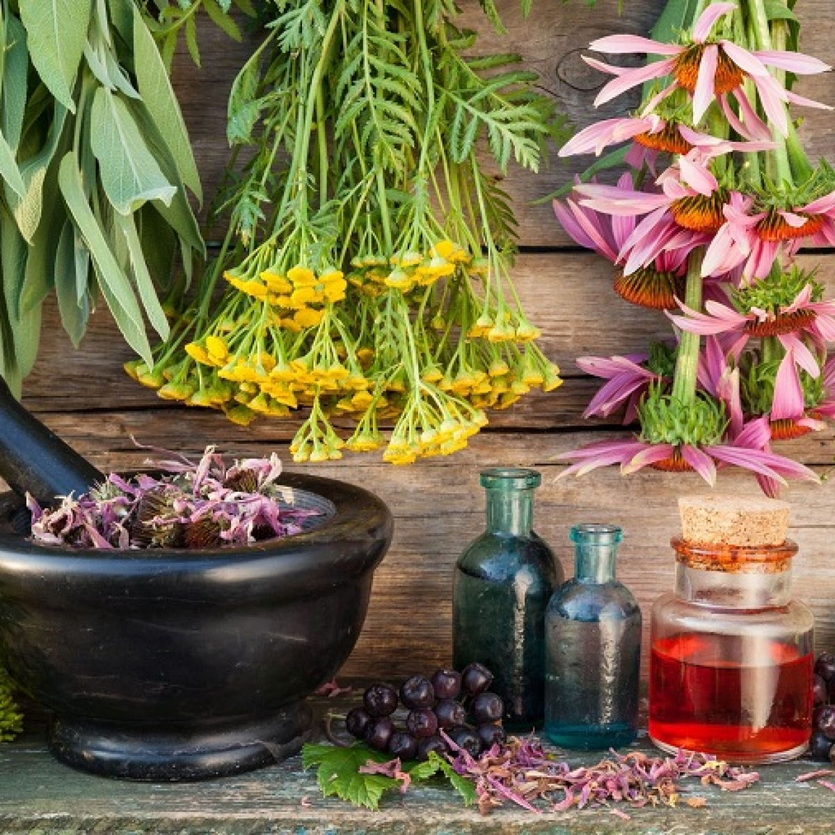 From Flower Therapy to Chakra Healing: Enter the world of Alternate Healing Therapies