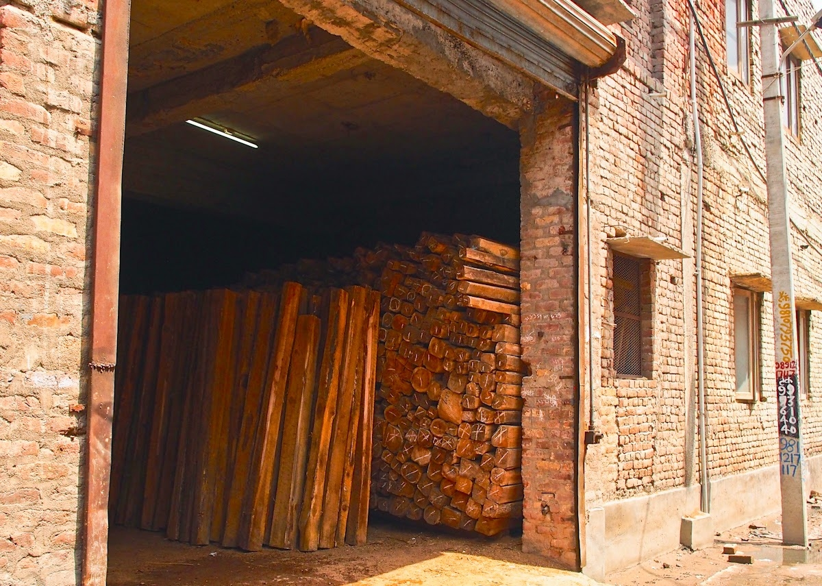 Indore: No official other than duty officers should be allowed in the timber market, says divisional forest officer over immoral practises by officials