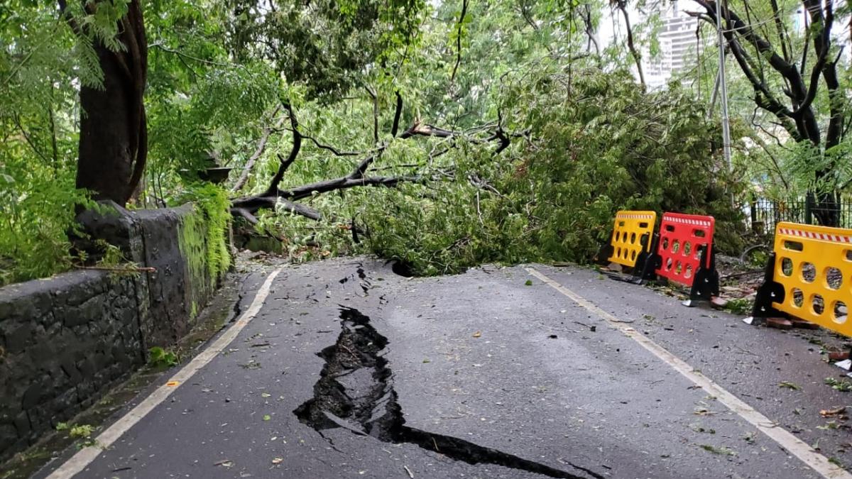 Mumbai Rains: Malabar Hill repair work will take four months