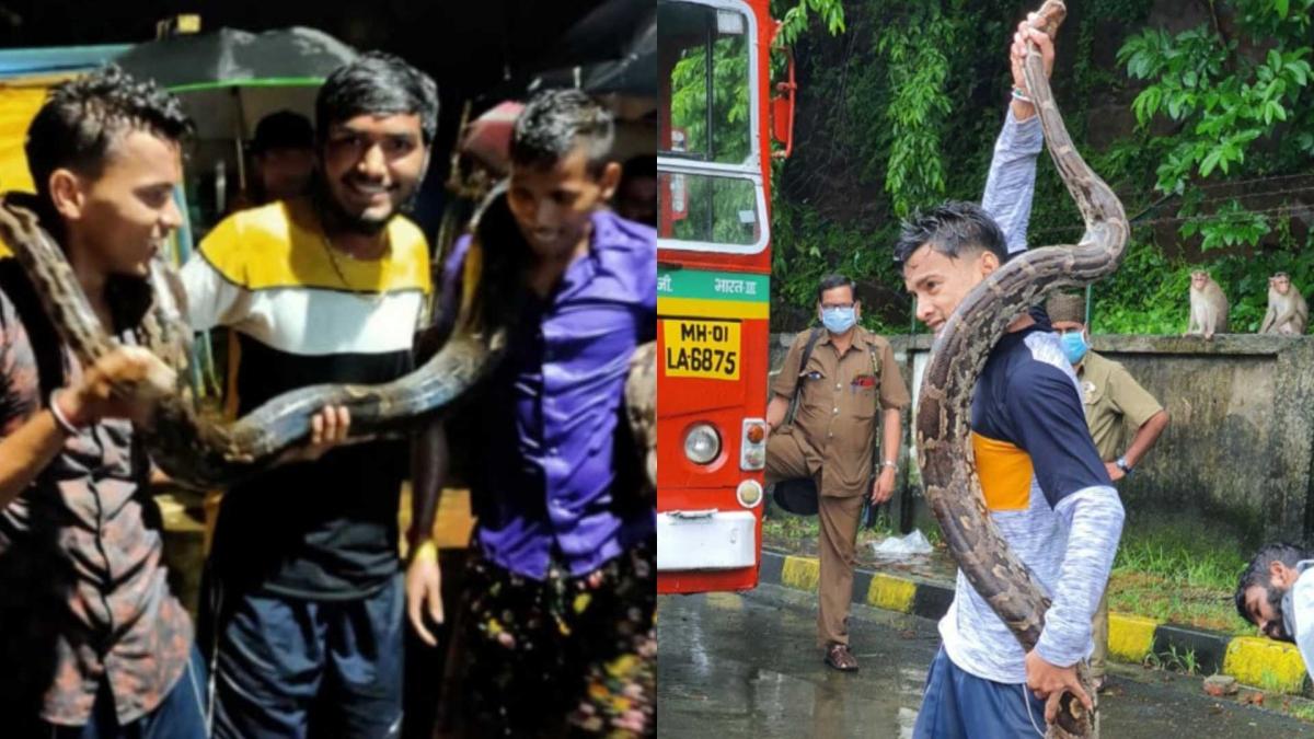Mumbai: Forest department inquires into rough handling of python