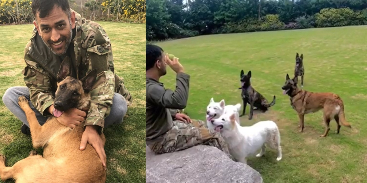 International Dog Day 2020: MS Dhoni and his love for his furballs will leave you in tears