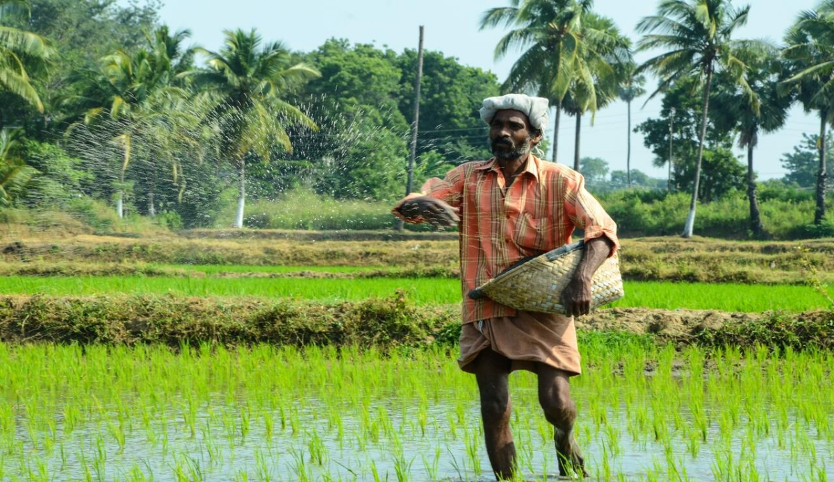 Teji Mandi: Agri reforms to be a game-changer for farmers
