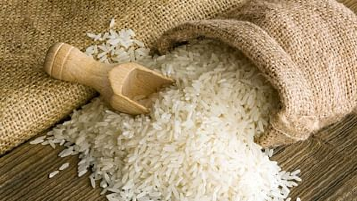 Madhya Pradesh: Congress, BJP spar over 'inferior quality' rice distribution