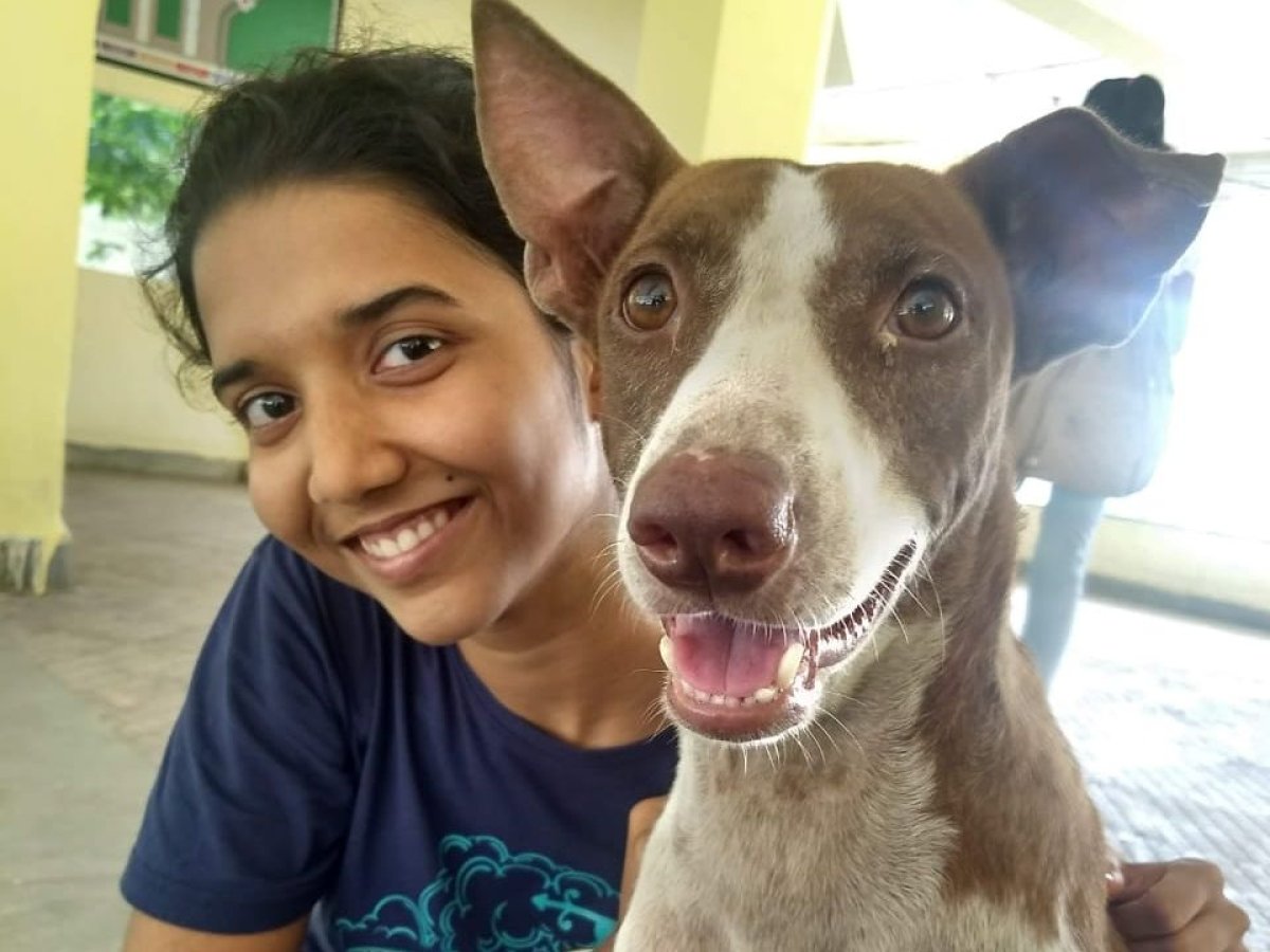 Young vet launches website to adopt animals