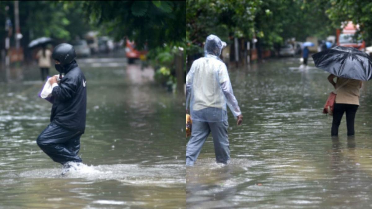 Weather update: IMD issues red alert, extremely heavy rain likely in Mumbai, Raigad, Thane, Pune and Ratnagiri