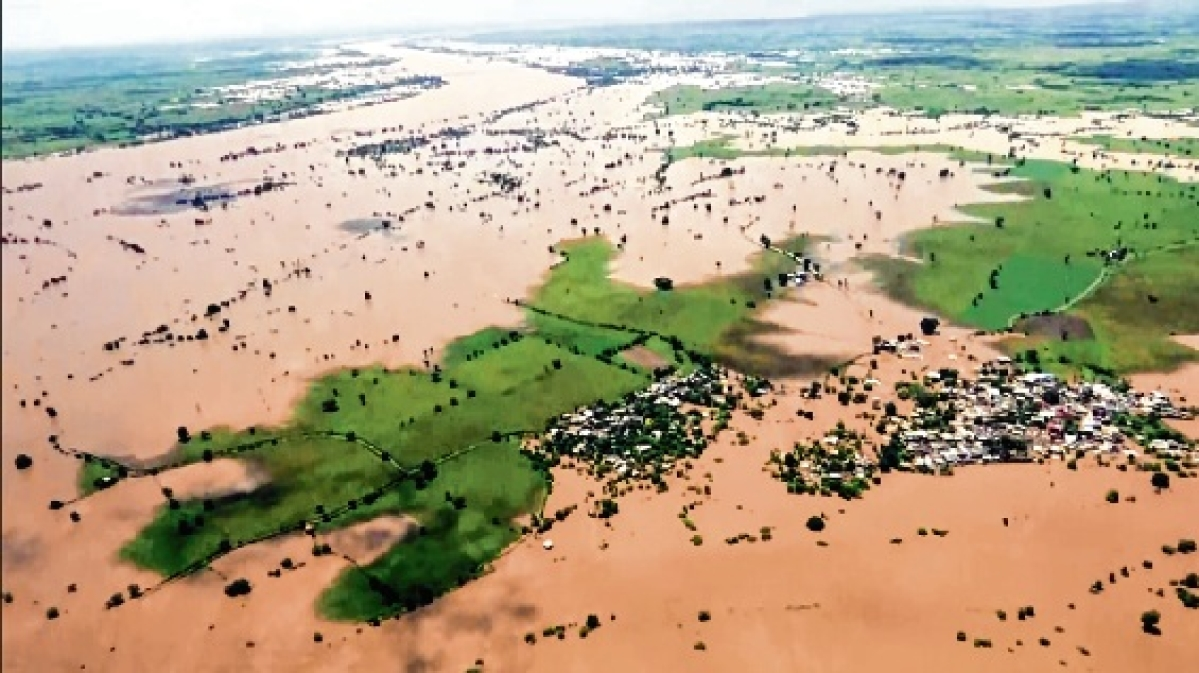 Madhya Pradesh rain: 8 dead, rescue operation on