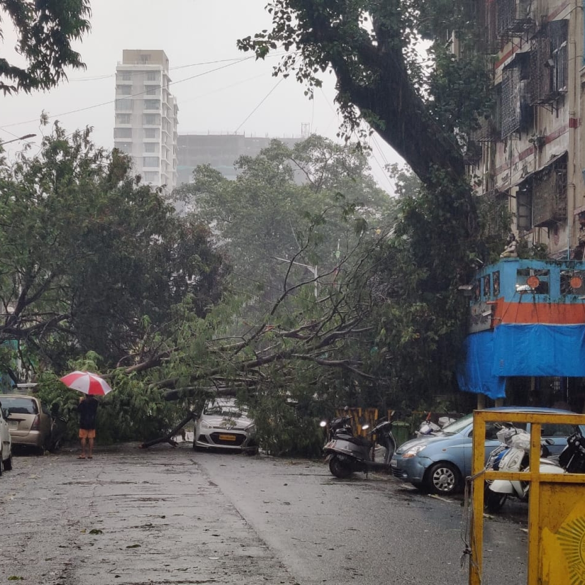 Full list of BMC schools with addresses which are serving as Shelter Homes