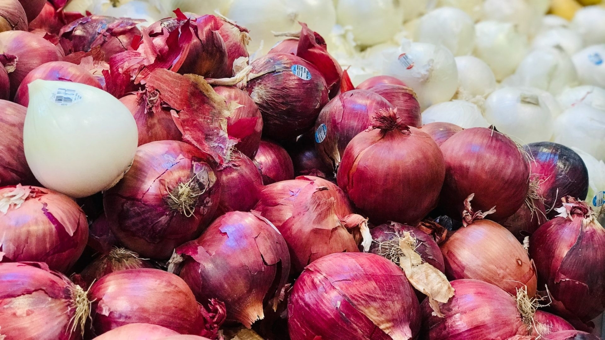 Maharashtra: Onion growers protest export ban