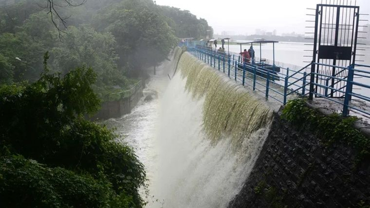 Good news! Water level in Mumbai's seven lakes rises to 98.04%
