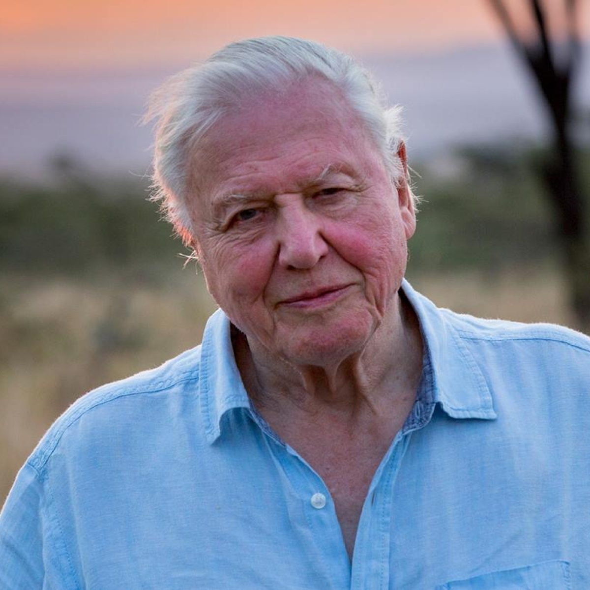 British broadcaster David Attenborough joins Instagram at 94; smashes world record