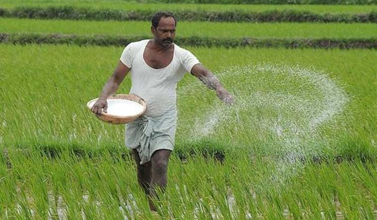 Farmers need price assurance too