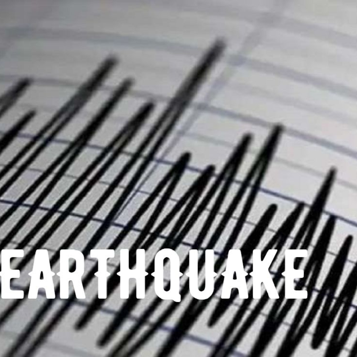 6.4 magnitude earthquake hits Assam - Here's what we know so far