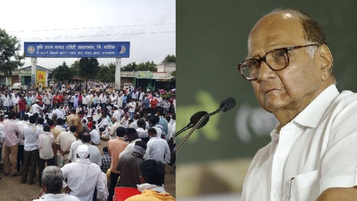 NCP chief Sharad Pawar urges Piyush Goyal to reconsider 'abrupt' decision to ban onion export