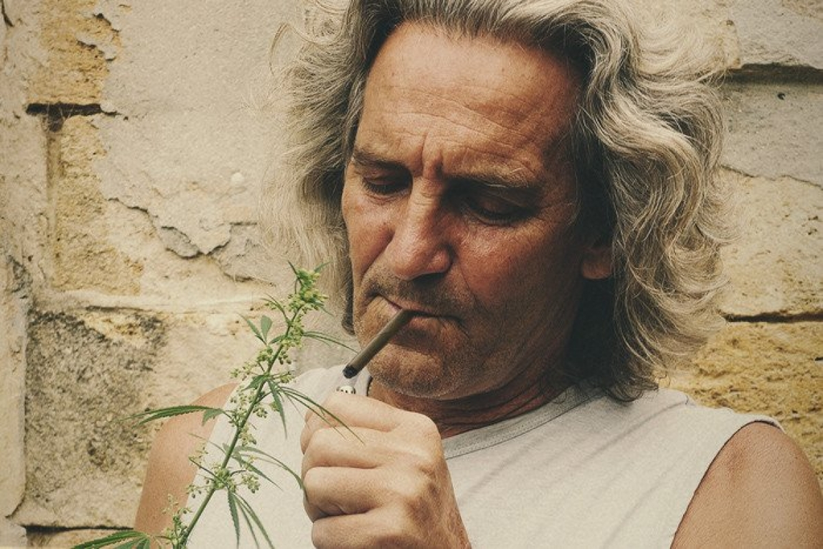 Study finds older adults using cannabis to treat common health conditions