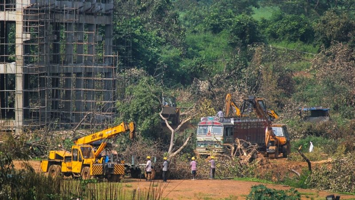 Arrey, Aarey back in contention: Maha Govt sets up nine-member committee to suggest alternate site for metro car shed