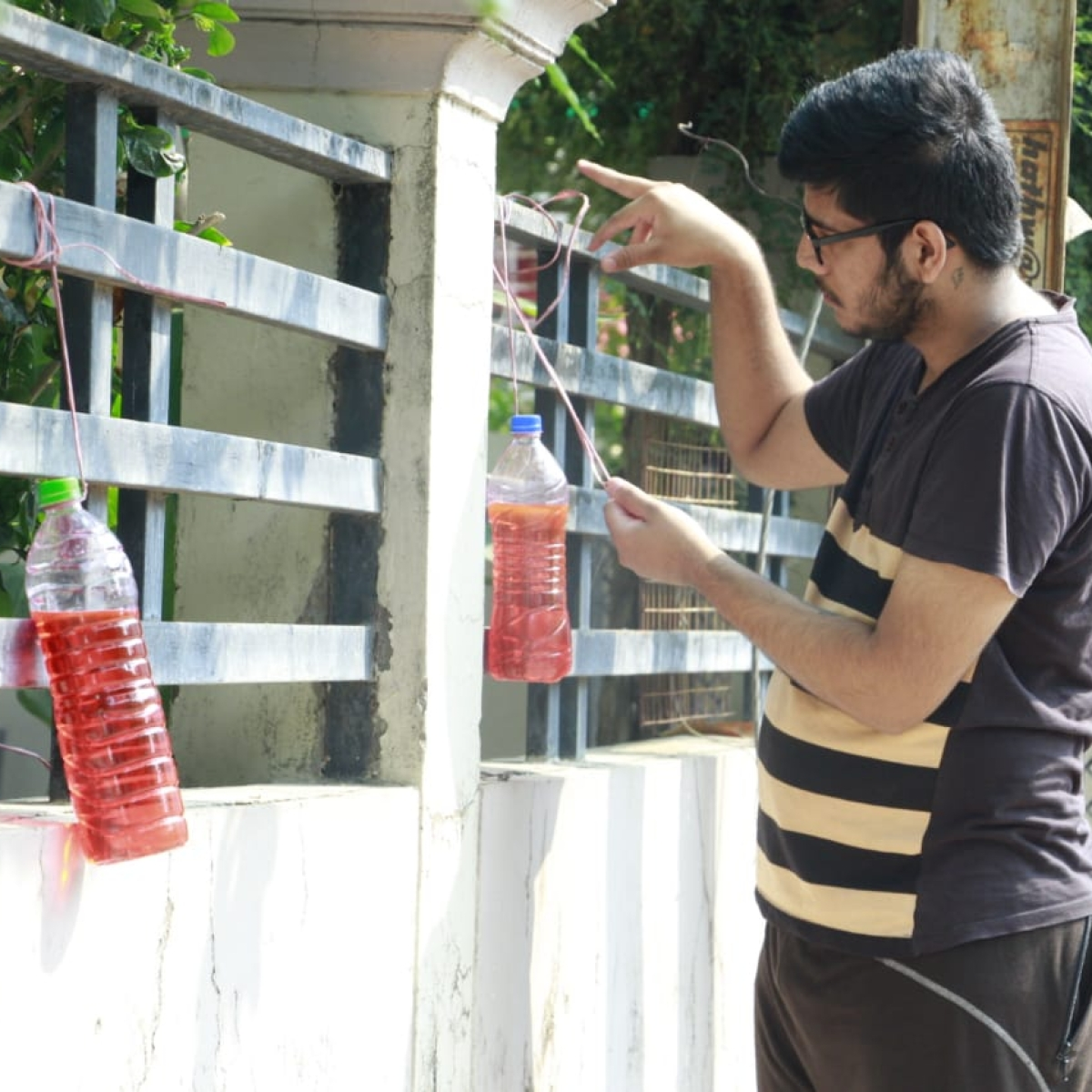 Trend in Indore: Hanging bottle of red liquid outside homes to stop dogs from pooping