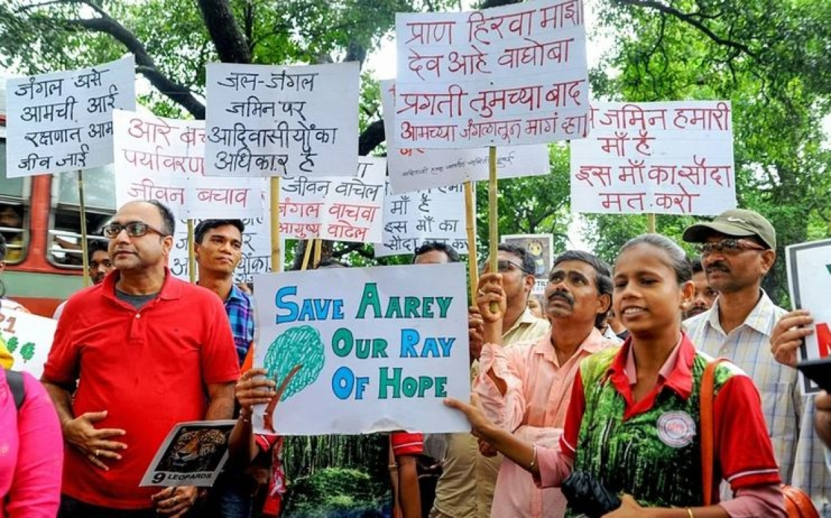 Power of the people: It takes a city to save a forest