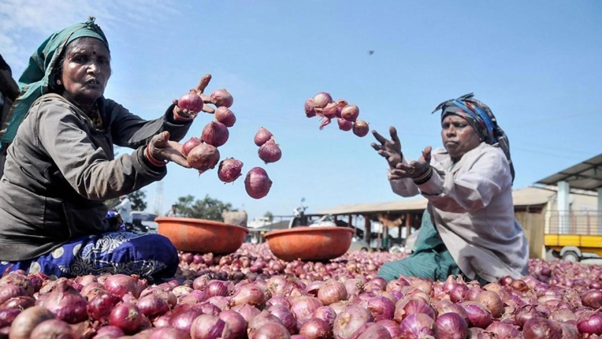 Onion auction restarts at Lasalgaon, touches Rs 6,802 per quintal