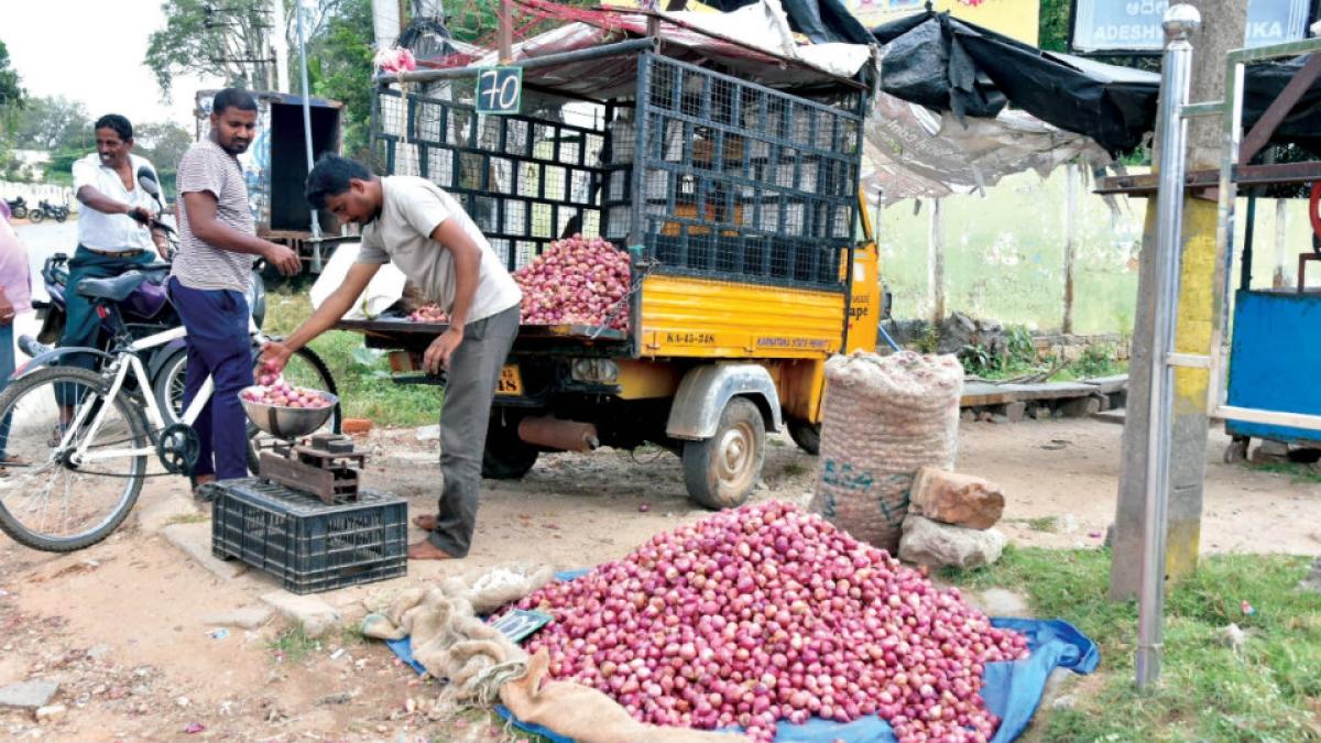 Navi Mumbai: Onion supply increases at APMC, prices likely to dip