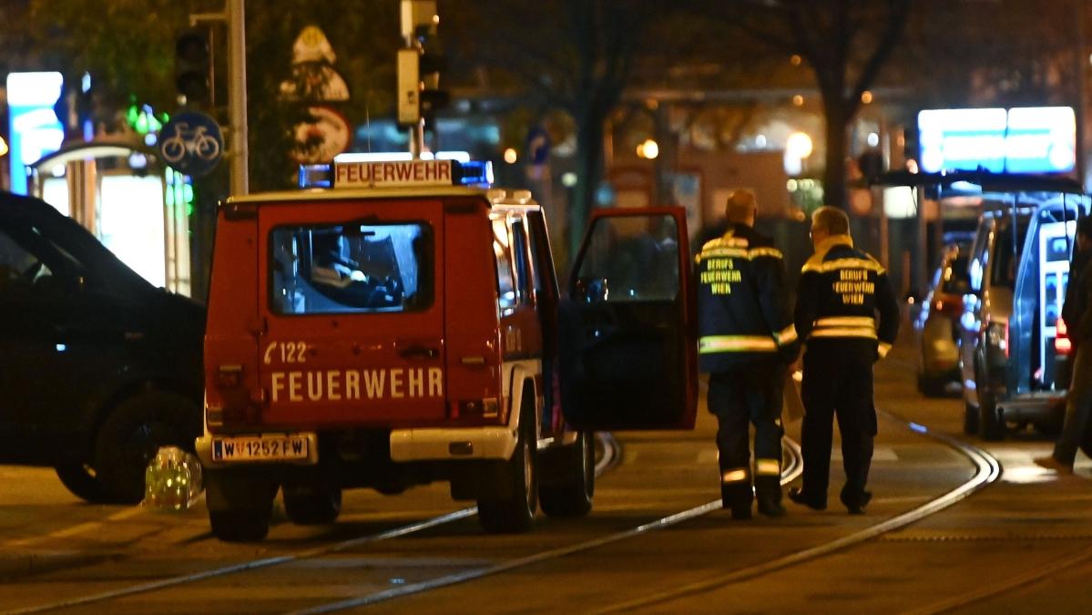 Austria: 2 dead, several wounded in Vienna terror attack