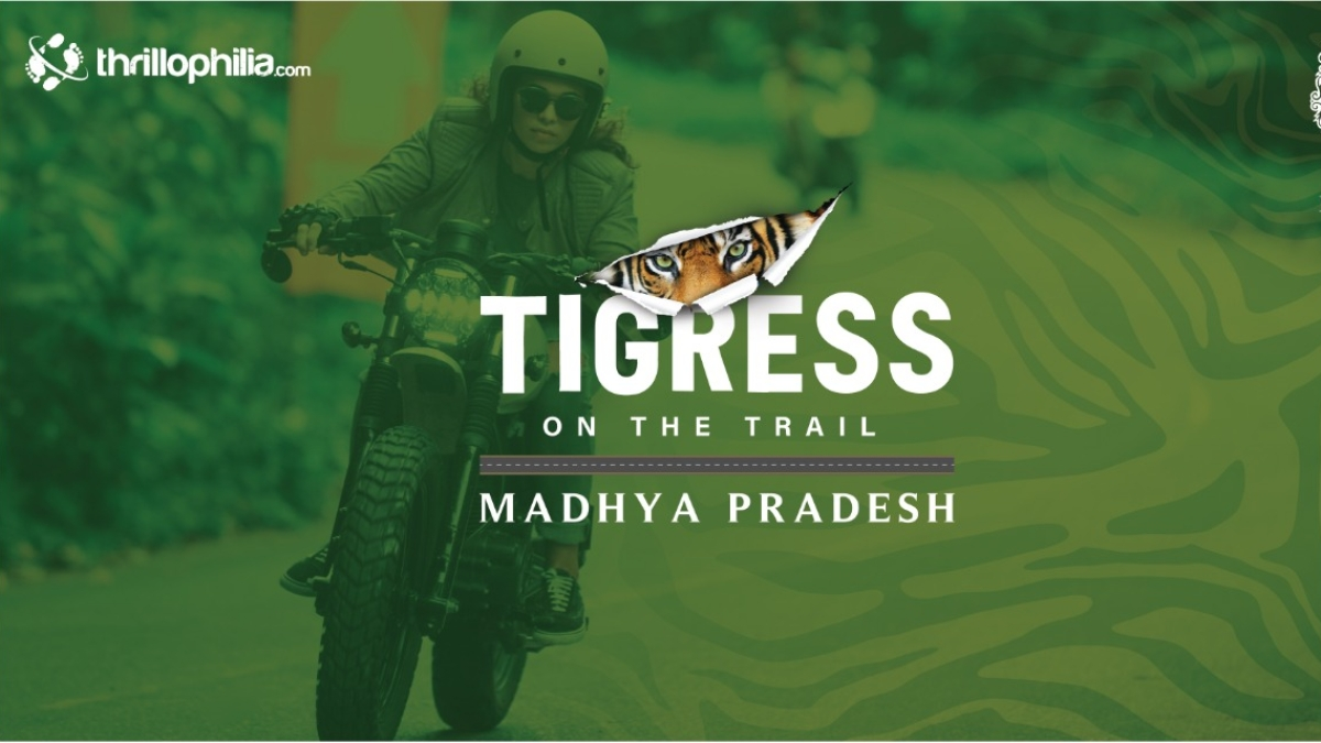 Madhya Pradesh: From November 19,  women bikers will be on 'Tigress on the Trail' to promote tourism, women safety