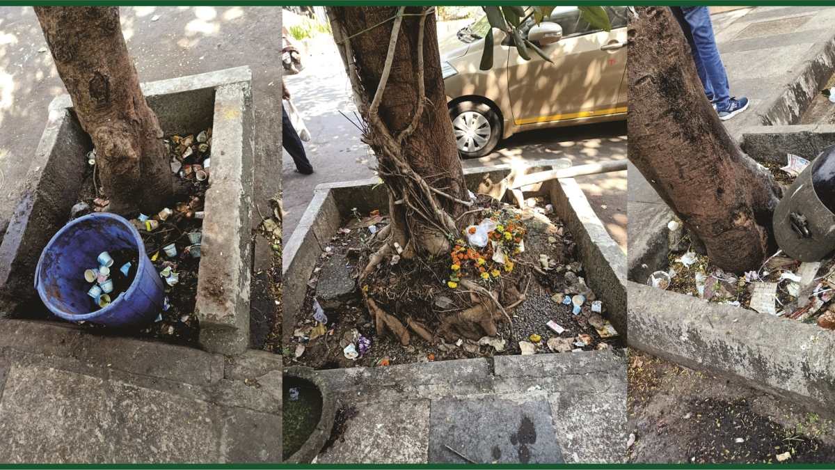 In Pictures: Tree guards turn garbage dumps in Bhayandar