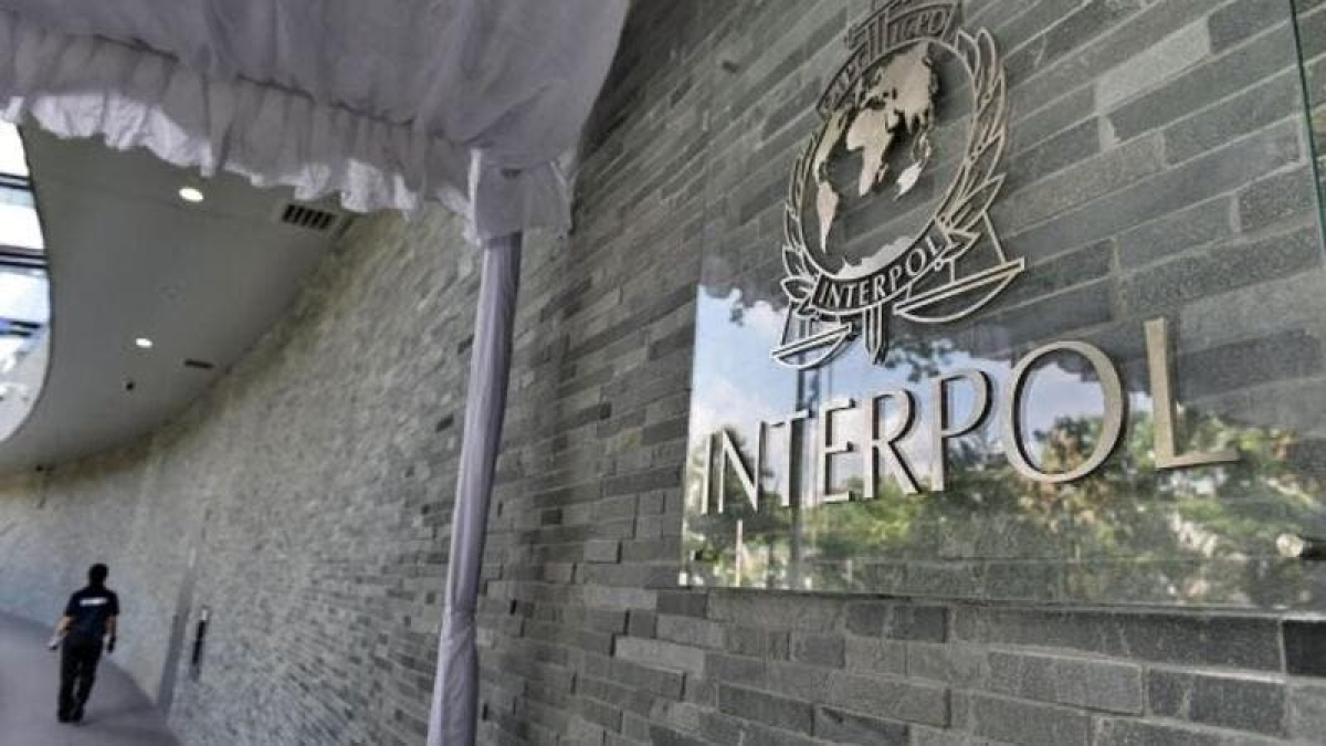 Interpol quest for Darwin file