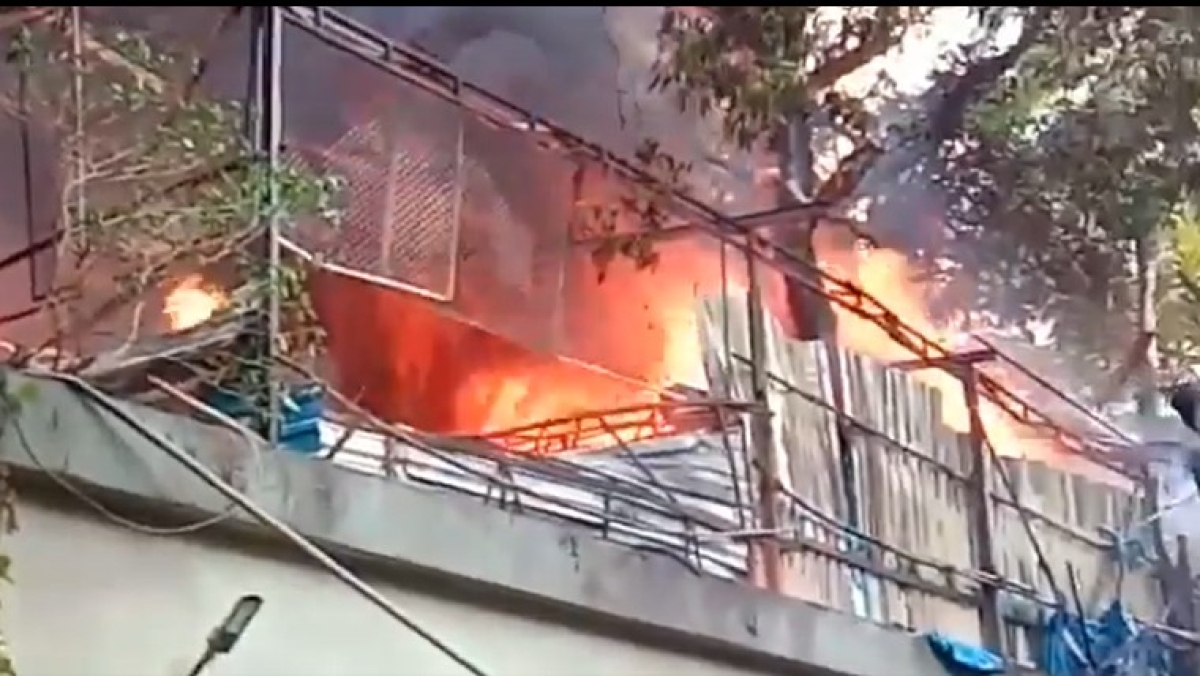 Watch Video: Fire breaks out at a wedding venue in Mumbai's Goregaon, no casualty reported