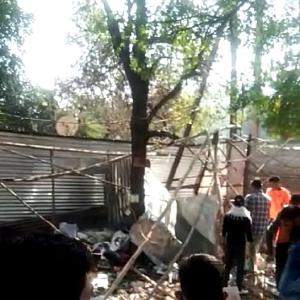 Bhopal: Sandalwood thieves targeting even the VIP zones of state capital