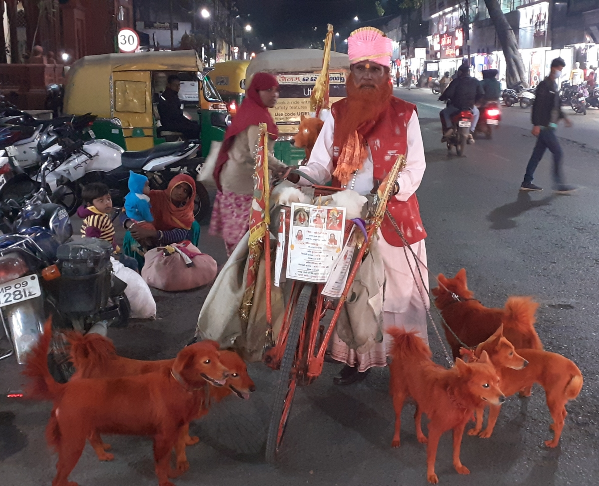 Old man in Indore taking care of 28 Pomeranian dogs