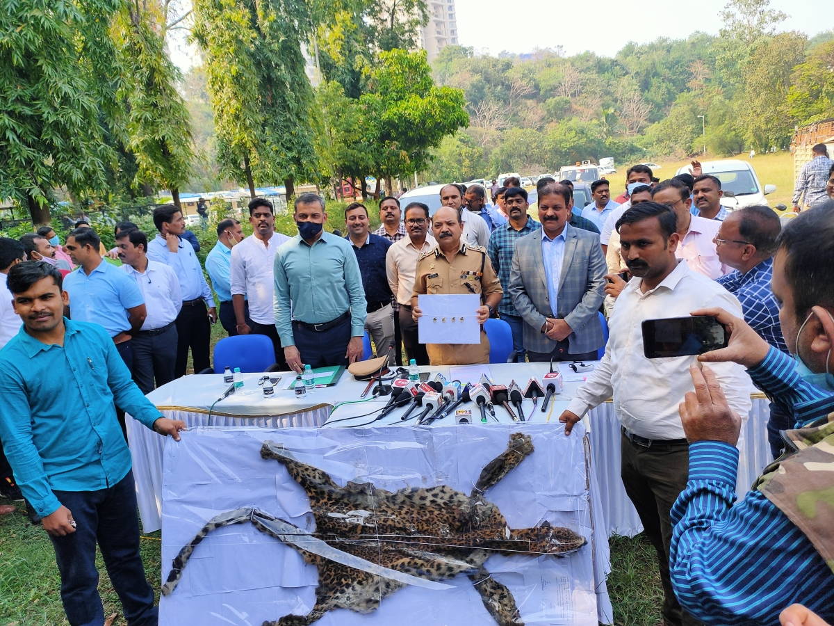 Navi Mumbai: Two held with leopard skin and body parts in Panvel forest
