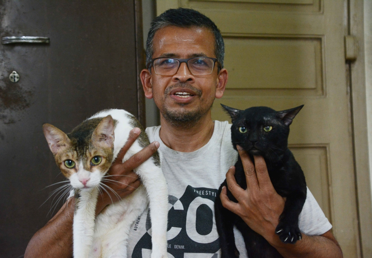 Angels of Mumbai: 28 cats, 6 dogs and a human!