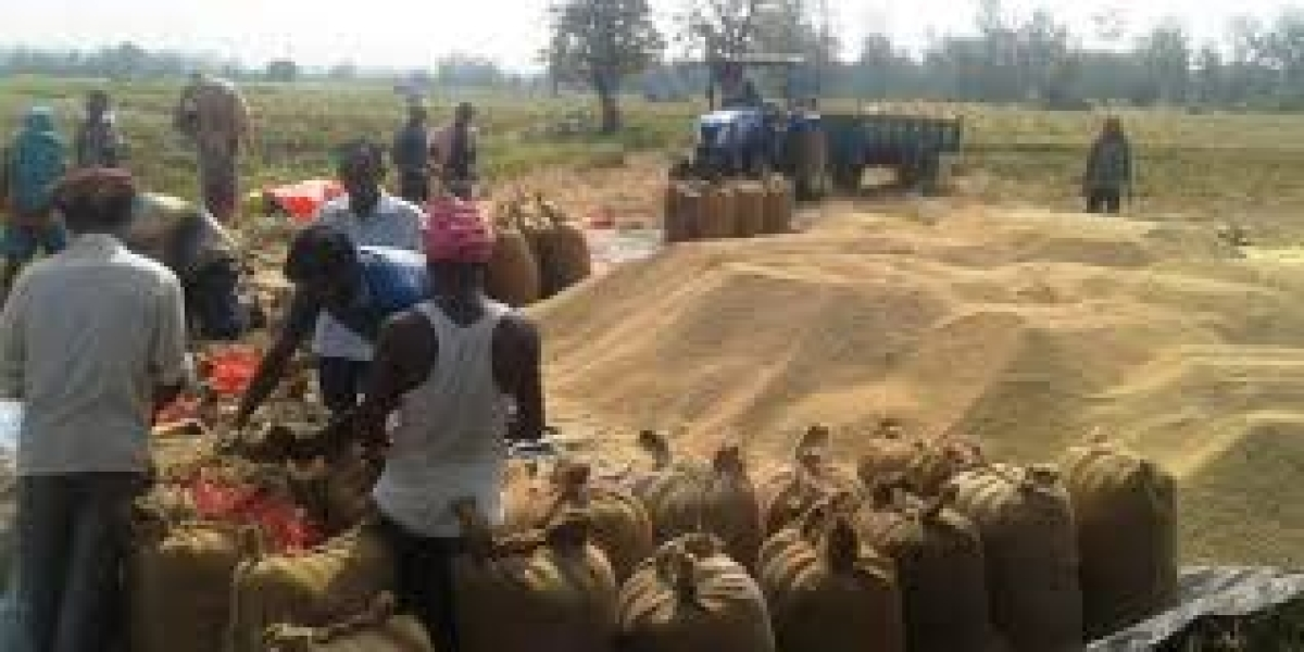 Chhattisgarh may extend paddy procurement time frame
