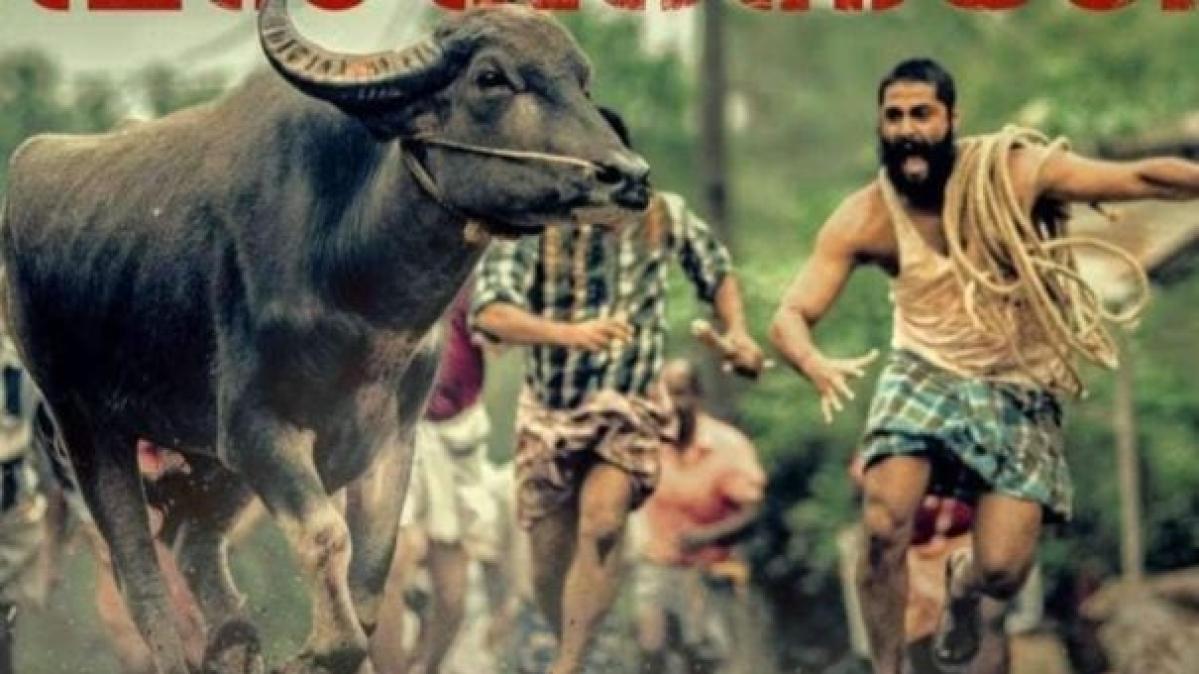 CinemaScope: From Jallikattu to Soorarai Pottru, regional cinema finds new audience base on OTT