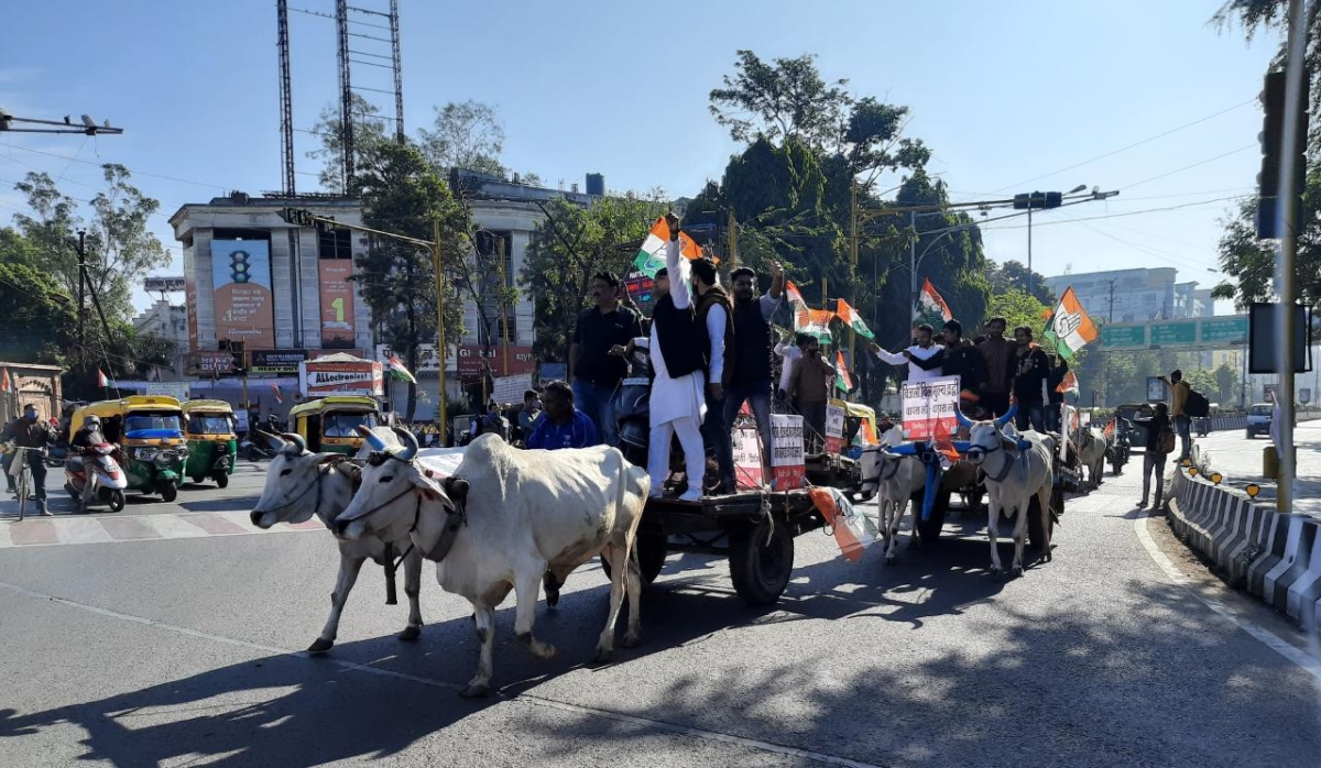 Madhya Pradesh: Congress takes out bullock cart rally in Indore to protest farm laws, fuel, cooking gas price rise