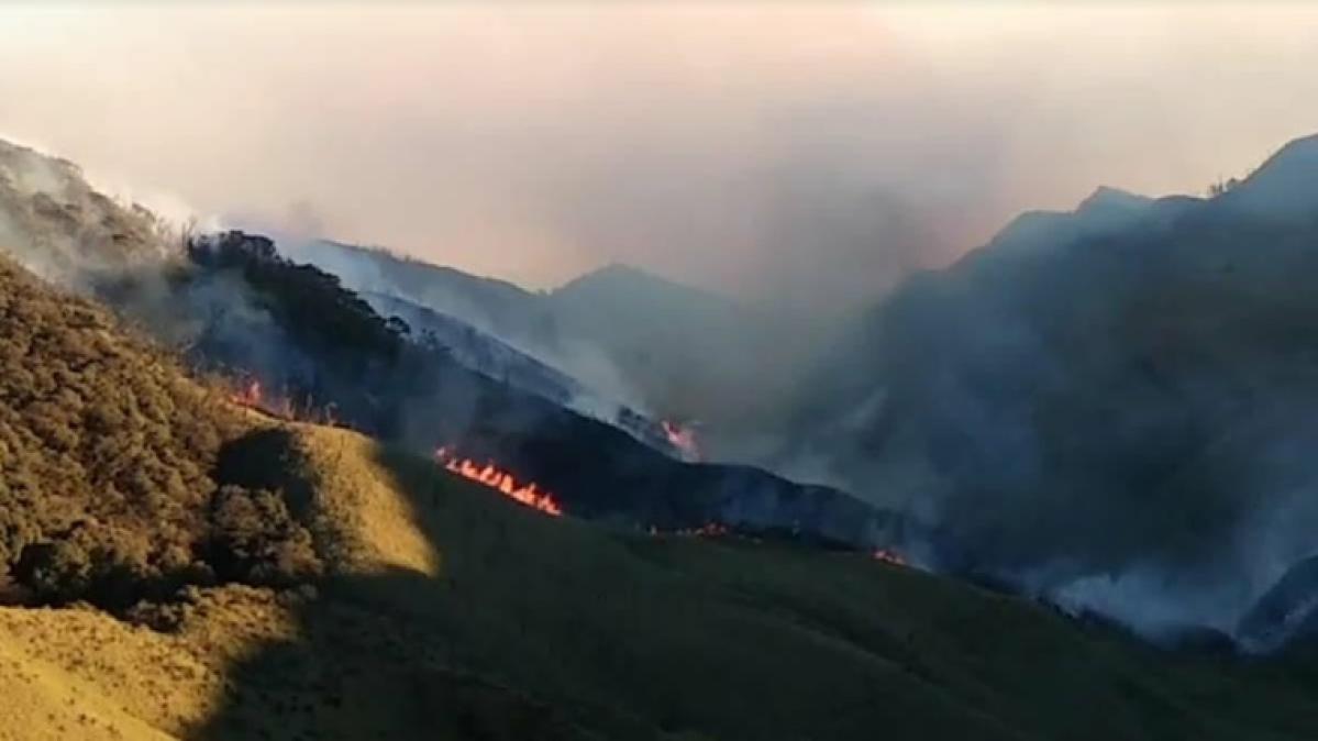 Wildfire in Nagaland's Dzukou Range spreads to Manipur; CM Biren Singh says Centre has assured assistance