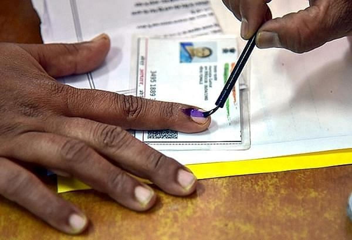 Representational polls