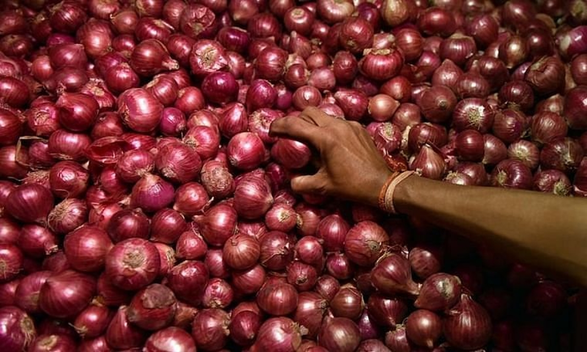 Markets witness arrival of onion in huge quantities