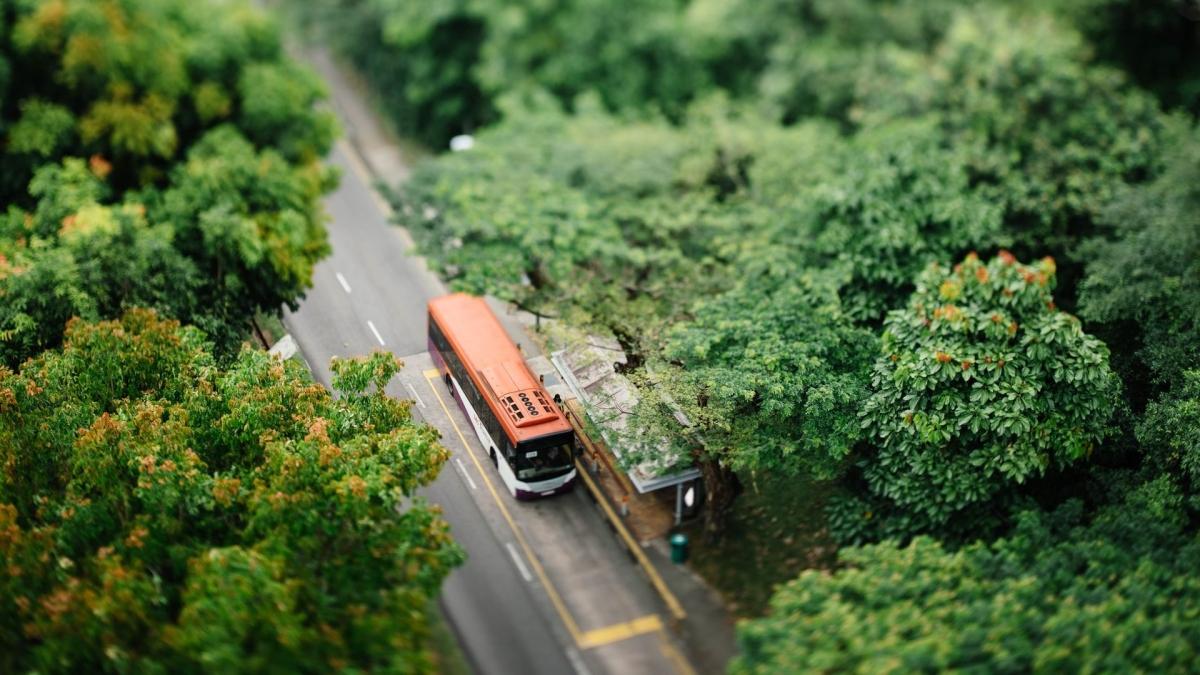 Bus falls into a 50 feet gorge in Maharashtra's Ratnagiri