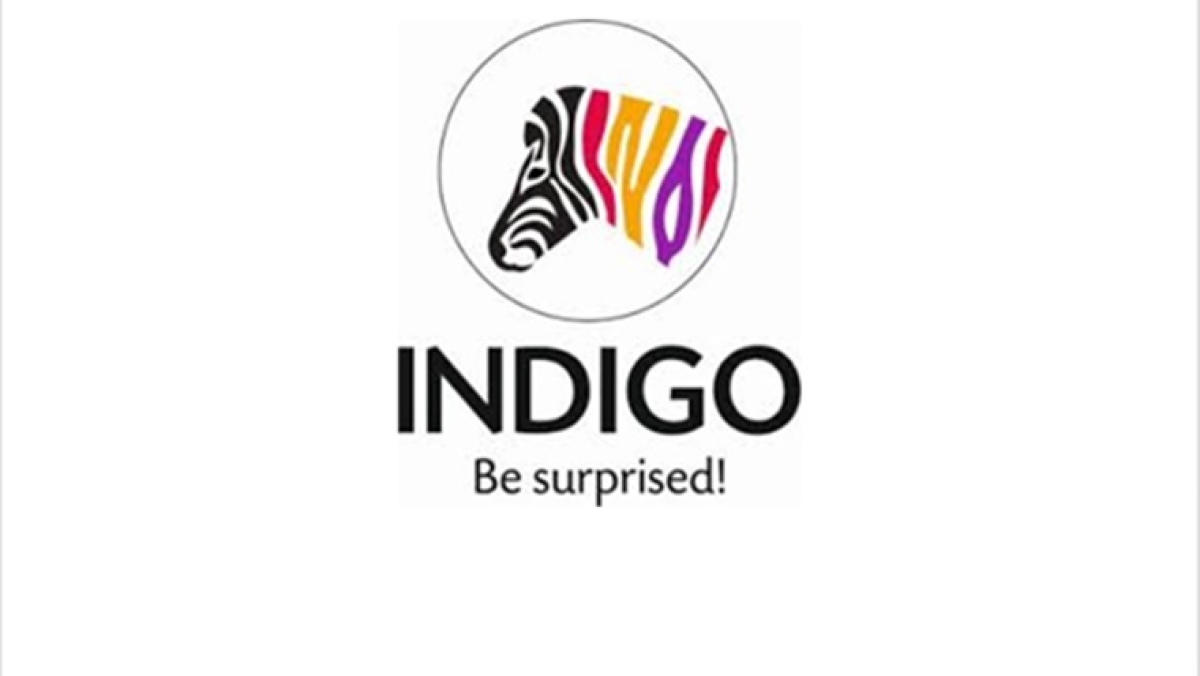 Indigo Paints IPO to open on Jan 20, price band set at Rs 1,488-1,490 per share: Check details here