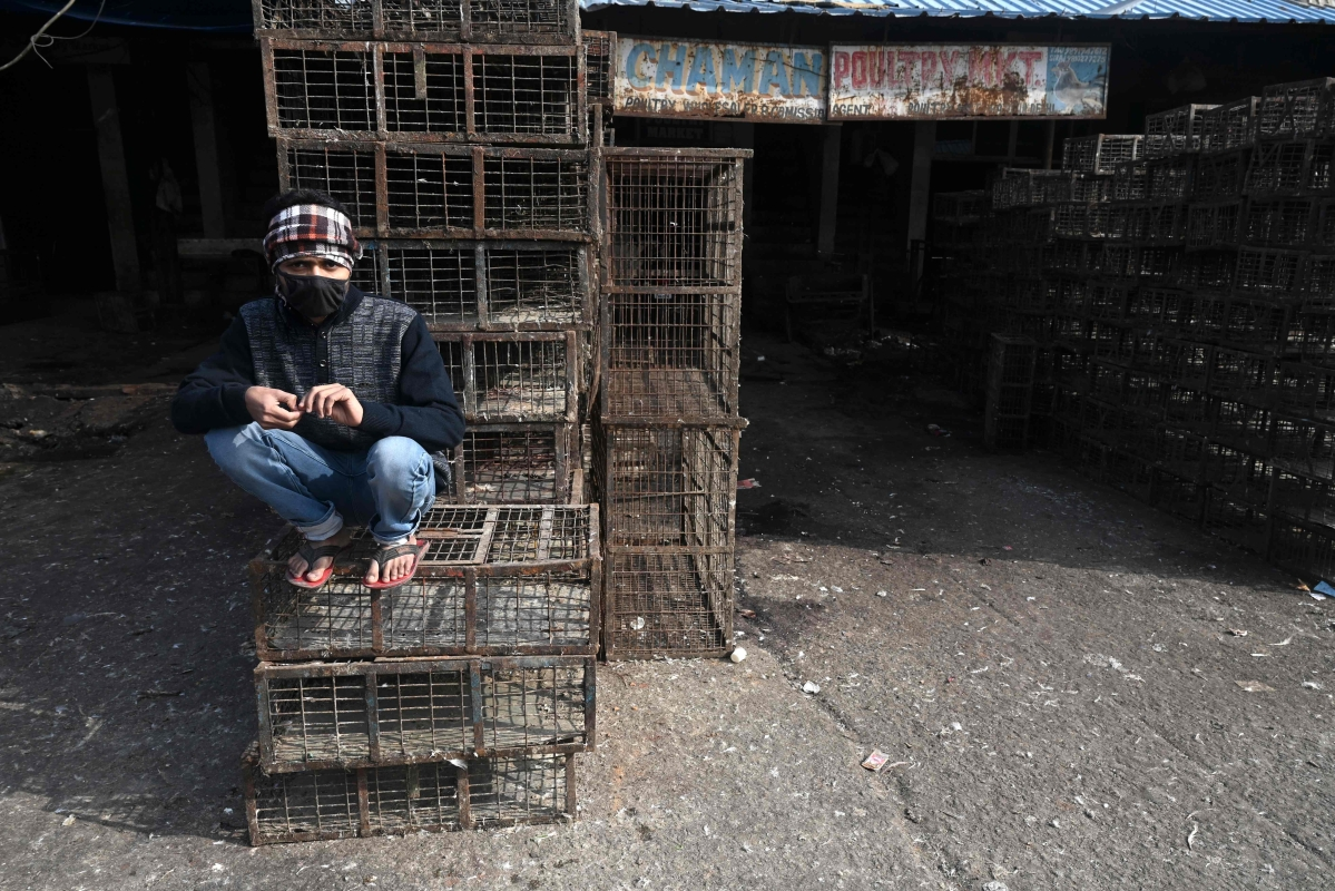 The poultry market in Ghazipur has been shut down temporarily
