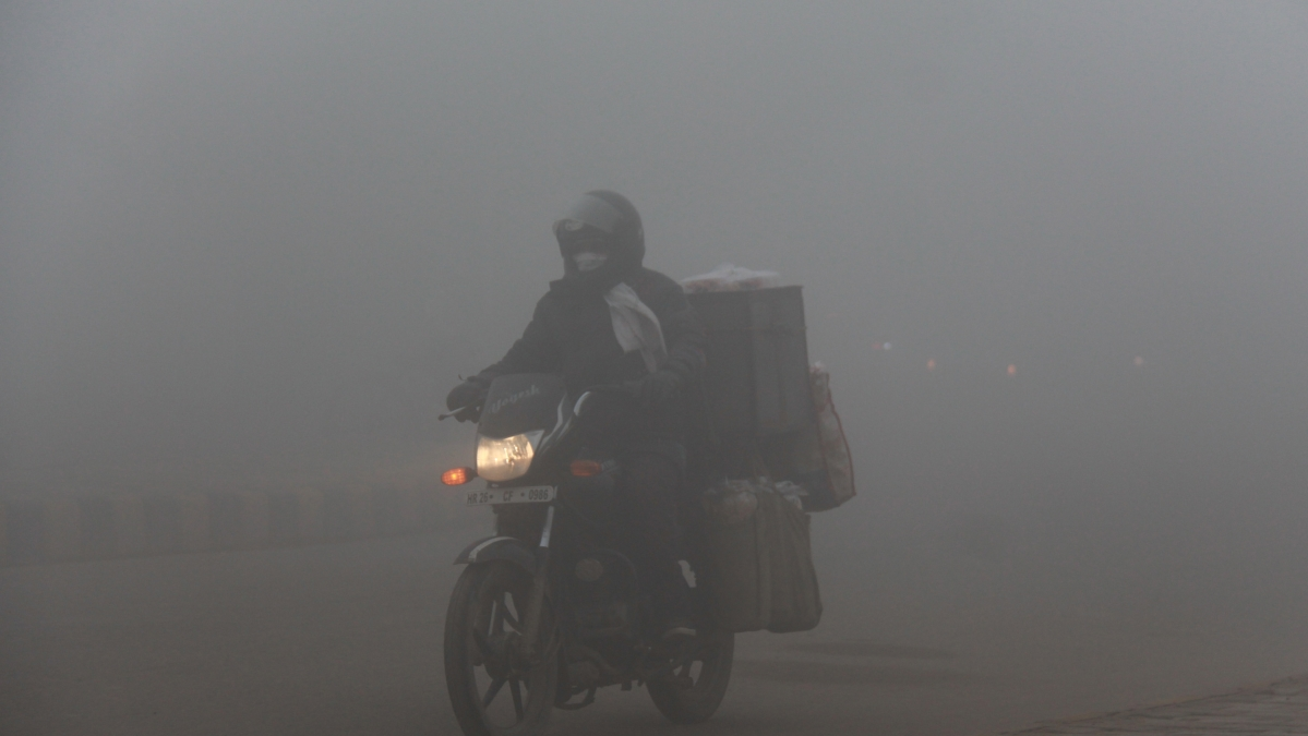 Watch video: Ludhiana wakes up to heavy fog, low visibility as temperature continues to fall in north India