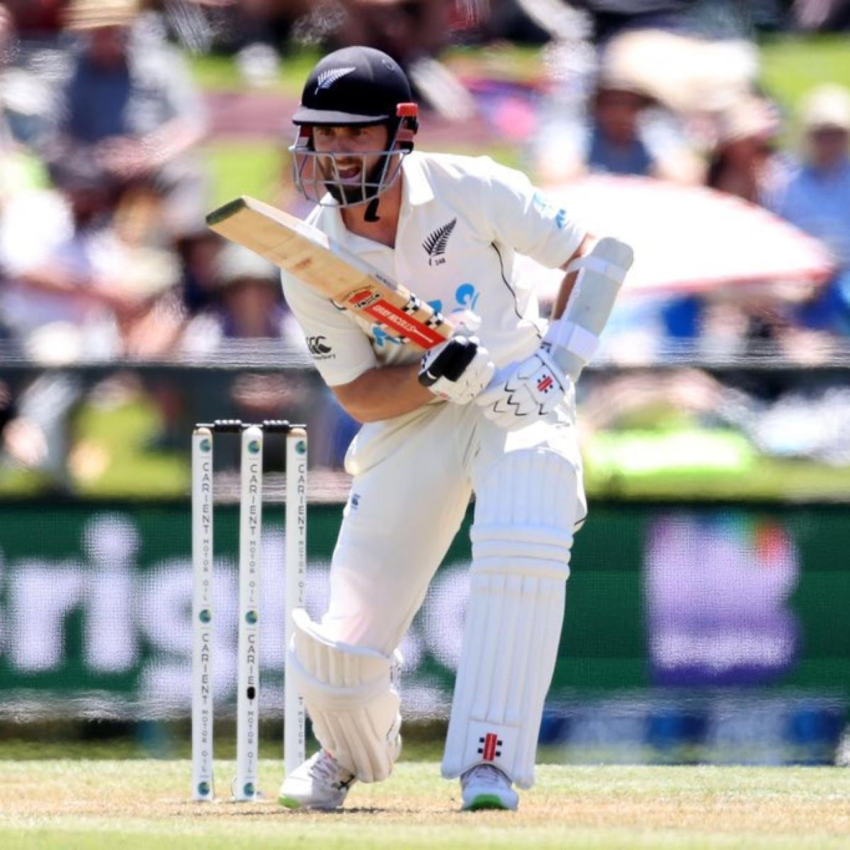 ICC Test rankings: Kane Williamson sets new high for Kiwi player, Steve Smith leapfrogs Virat Kohli to attain 2nd position