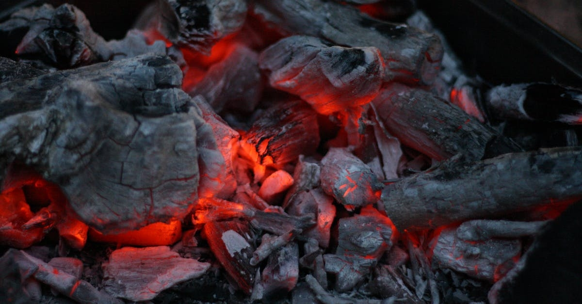 Coal India approves 32 mining projects involving incremental investment of Rs 47,000 crore