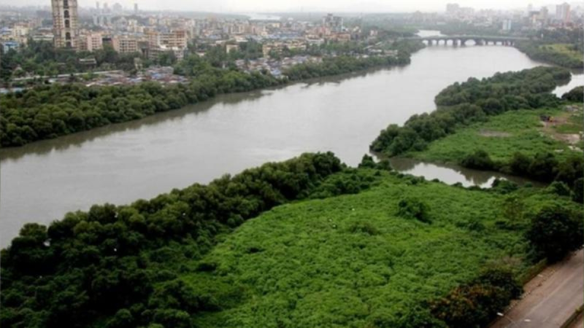 Mumbai: Thanekars see red over depleting green cover