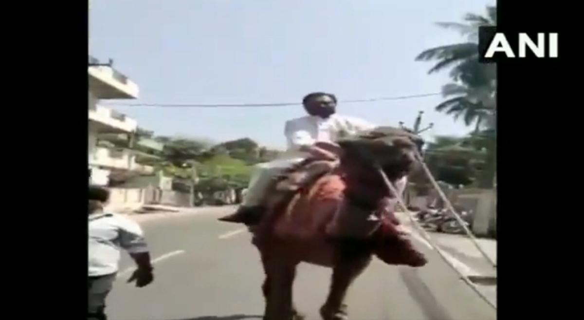 Congress leader GV Harsha Kumar riding a camel
