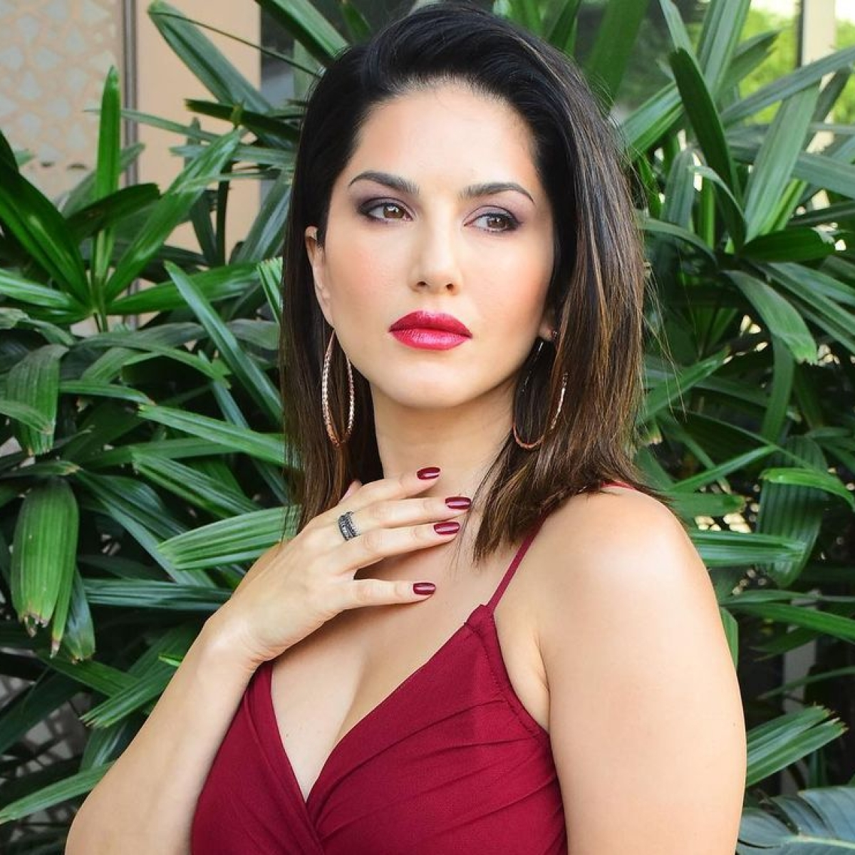 Kerala HC restraints Sunny Leone's arrest after actor seeks anticipatory bail in cheating case
