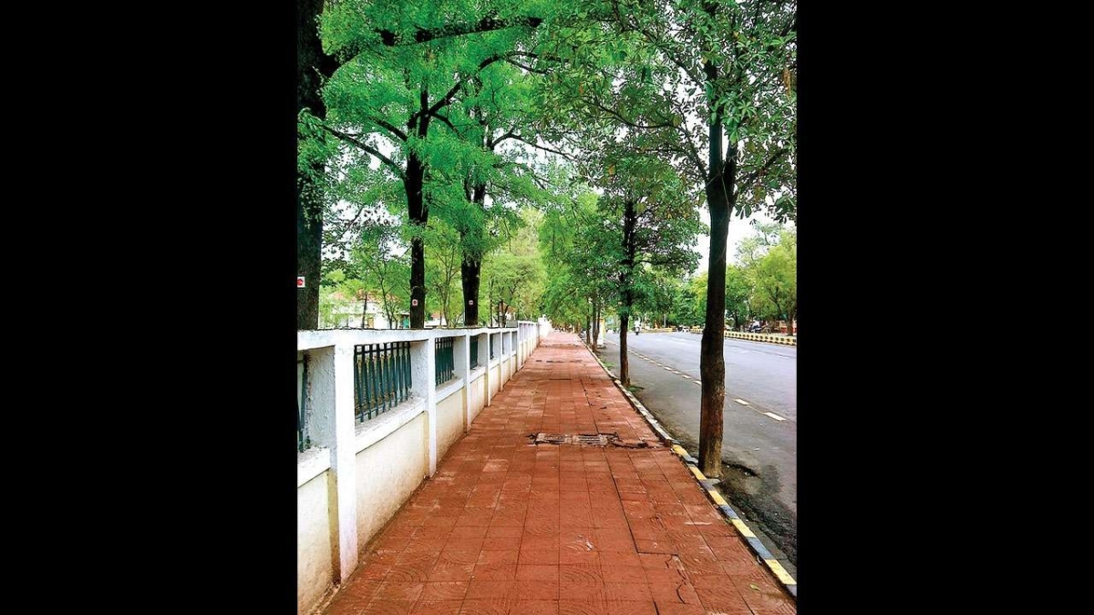 We must make politicians walk the talk when it comes to footpaths, says Anil Singh